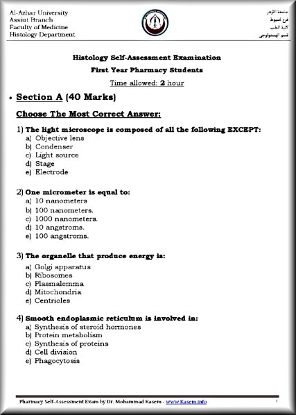 vbe assessment detail updated 1 Book chapter landing page: chapter 2: the basics of writing and testing vba code chapter 2: the basics of writing and testing vba code (part 1 of 2.