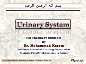 View Lecture online