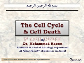Cell_Cycle