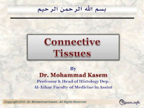 Histology of Connective Tissues