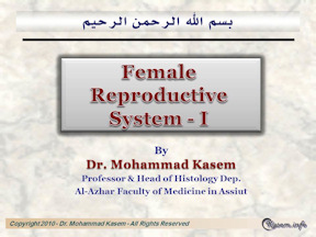The Female Reproductive System-1