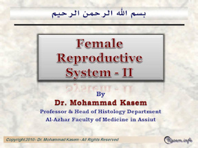 The Female Reproductive System-II
